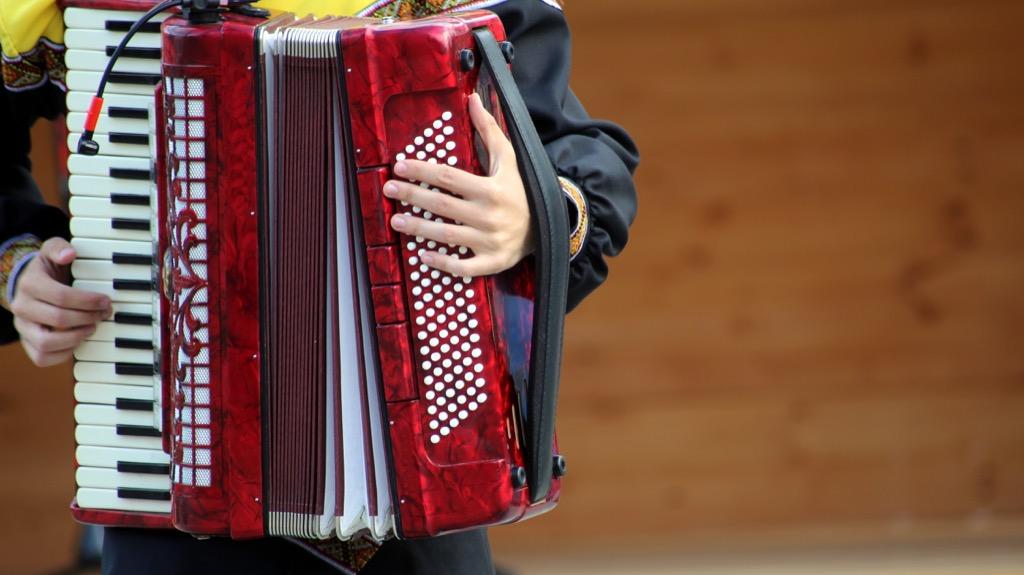 Accordion instrument musician