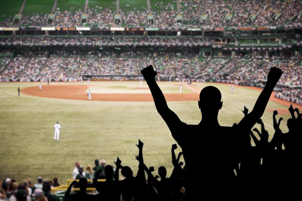 fan celebrating a baseball game
