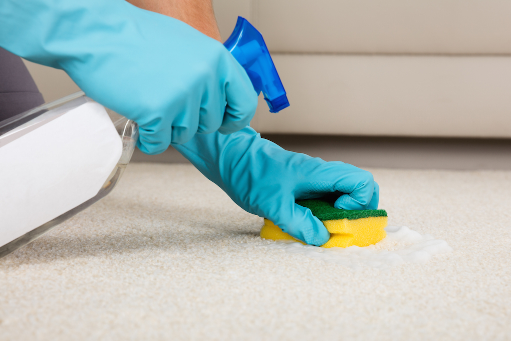 Cleaning a carpet stain with a spray bottle, common cleaning tips
