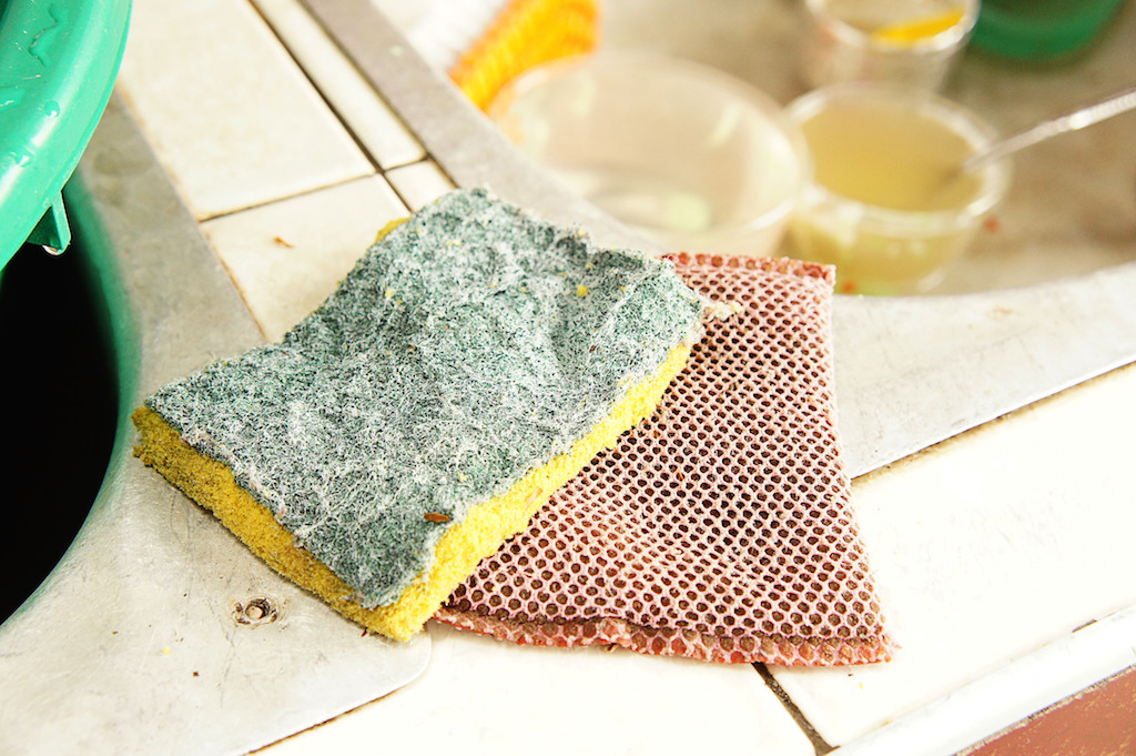 Dirty dish sponge Dirtiest Things in Your Home