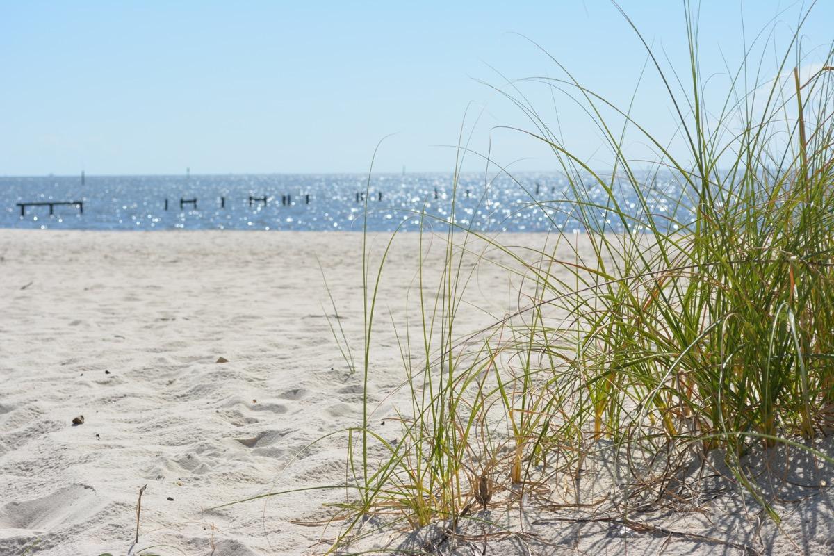 gulf coast mississippi beach, amazing facts
