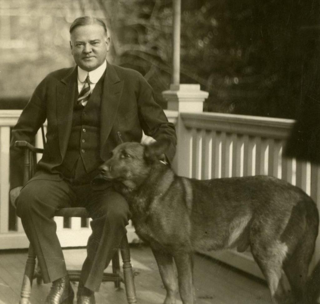 Herbert Hoover's dog, King Tut