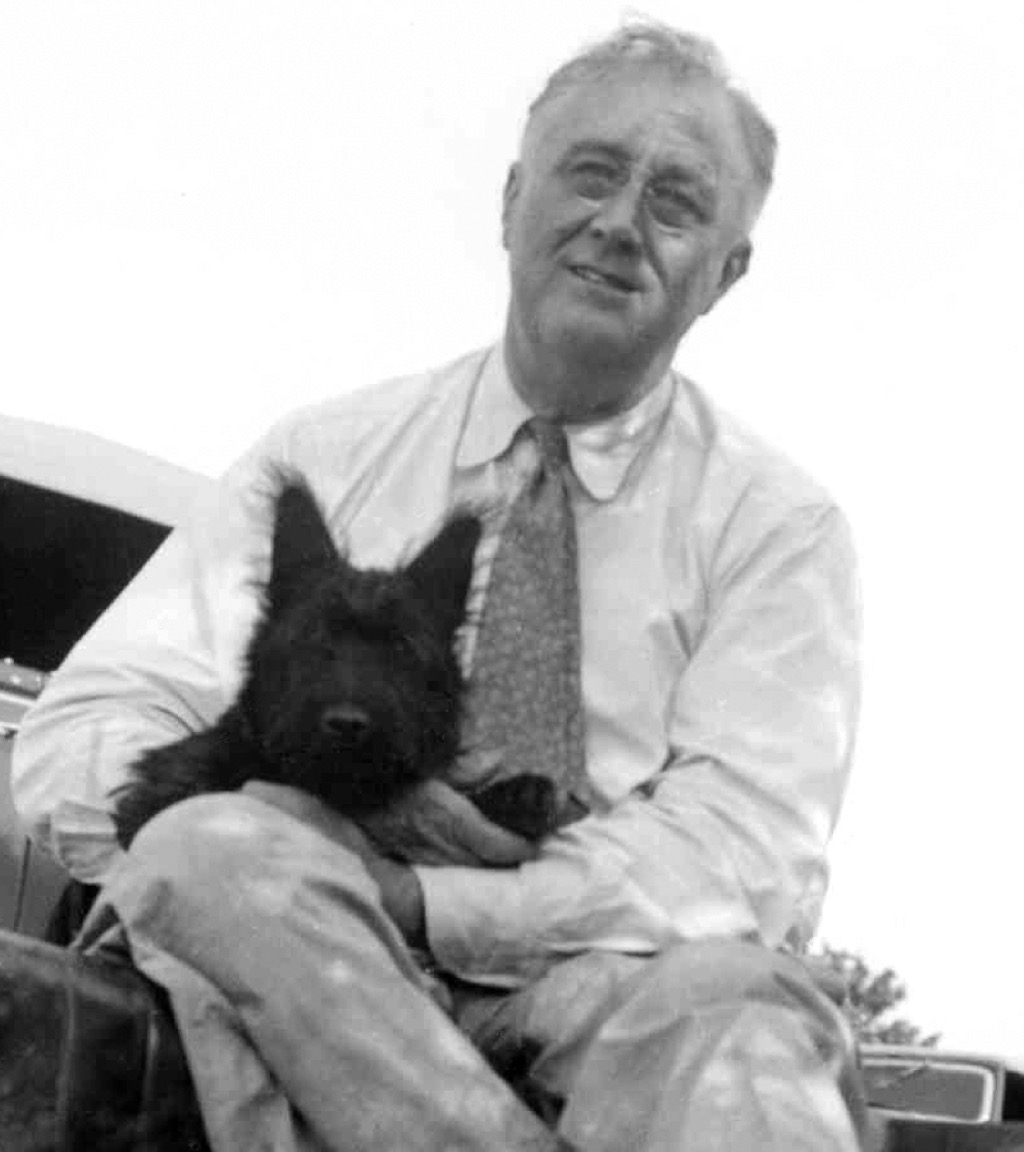 FDR and his dog, Fala