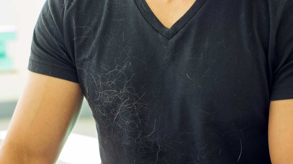Shirt covered in pet hair