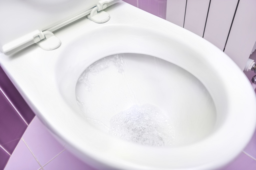 toilet bowl, old school cleaning tips