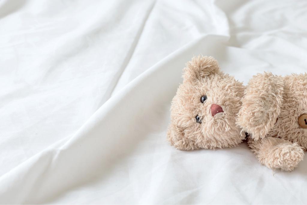 Stuffed animal Dorm Room