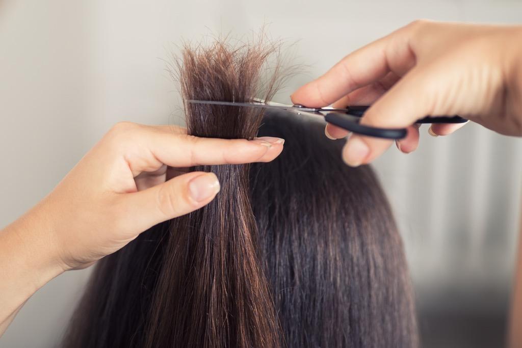 hair trim best hair over 40