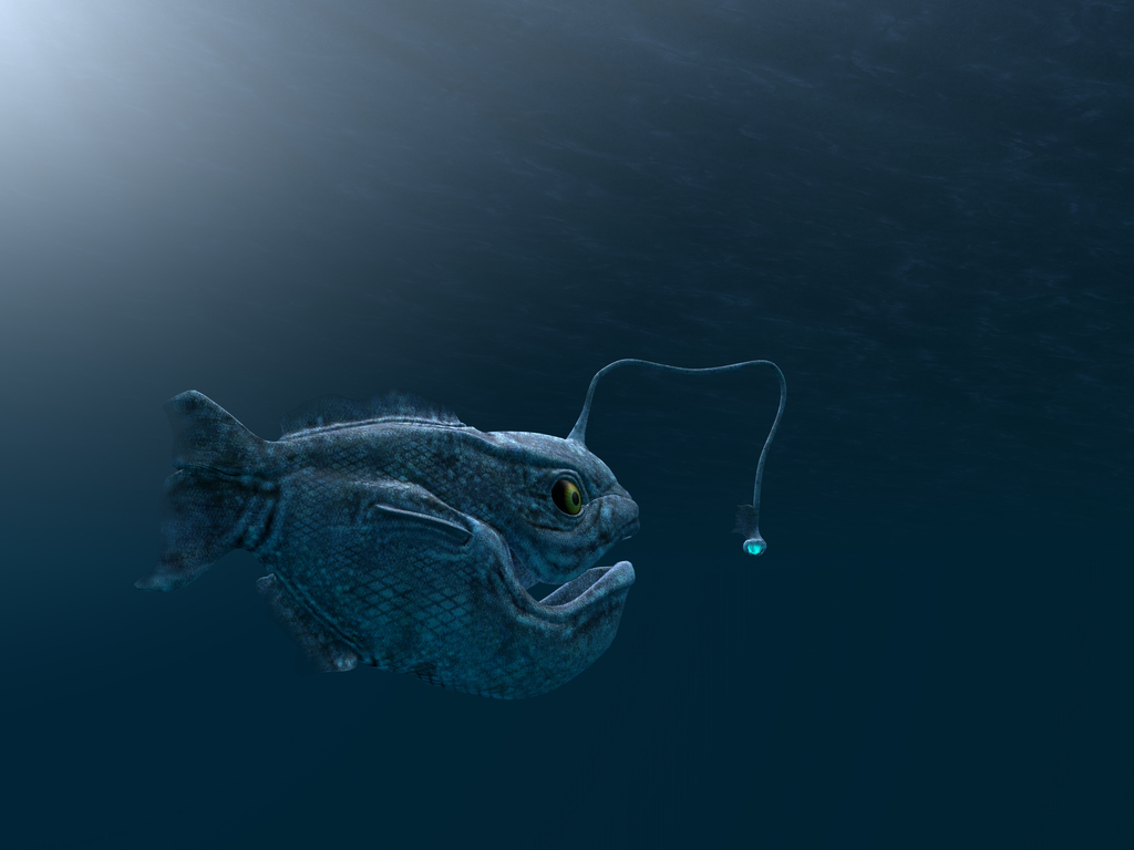 Angler Fish Crazy Critters
