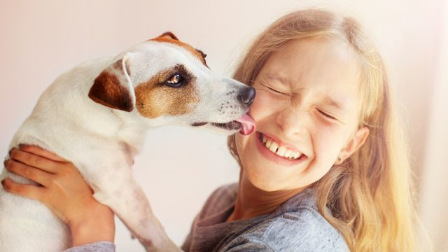 dog with kid, family dog