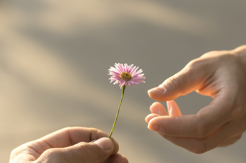 Handing out Flowers Pay it Forward Stories