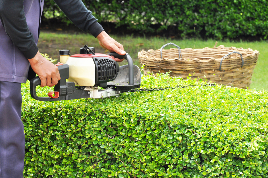 Man Trimming Shrubs Boosting Your Home's Curb Appeal
