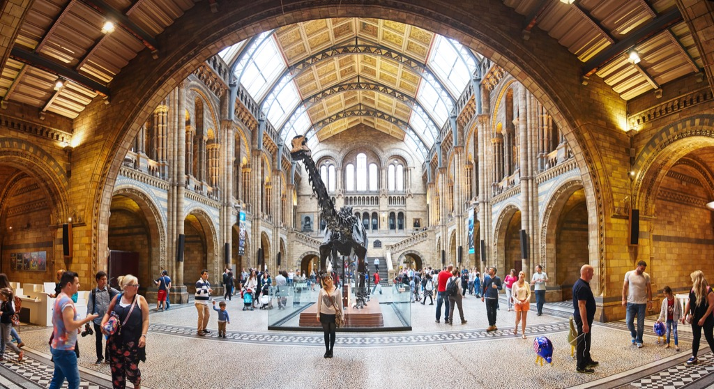 museum of natural history in london