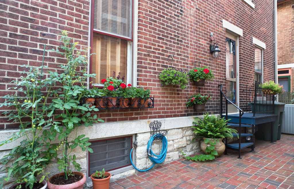 Organized Front of Home Boosting Your Home's Curb Appeal