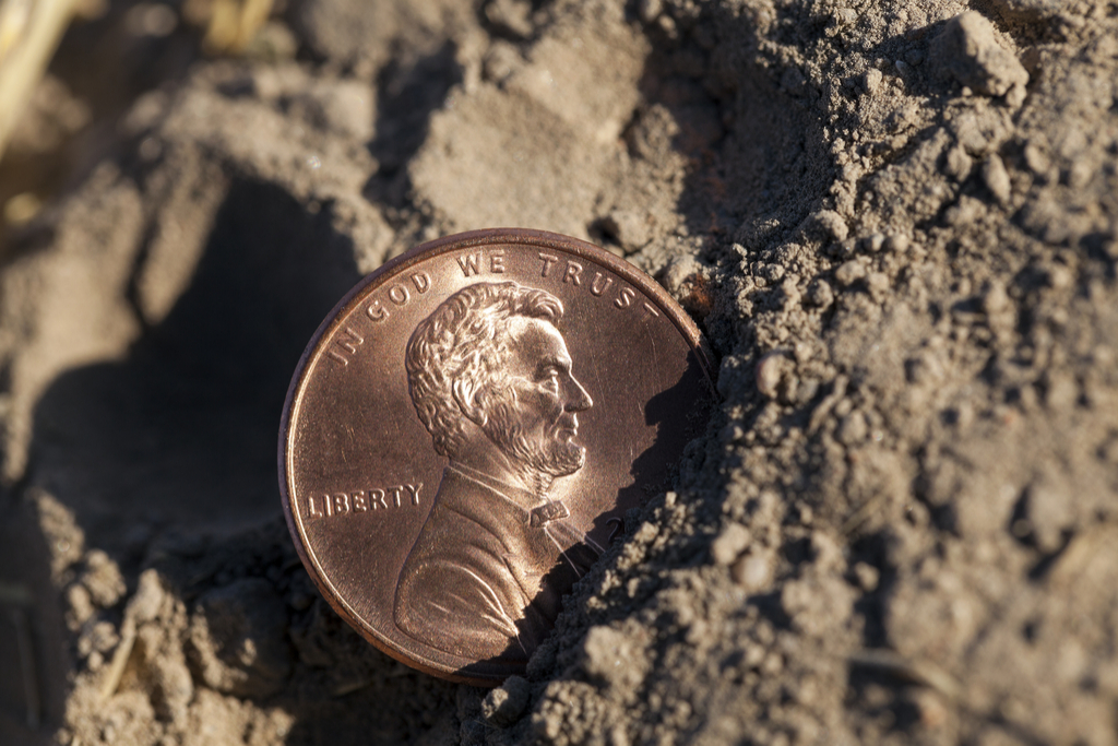 Penny in the Dirt Money Facts