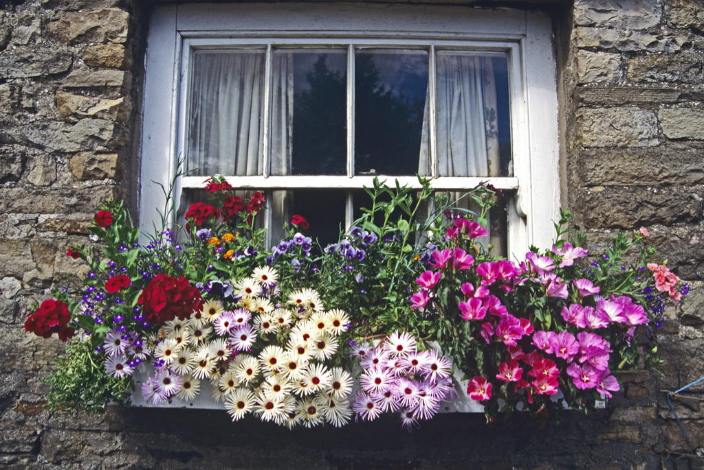 Window Boxes Boosting Your Home's Curb Appeal