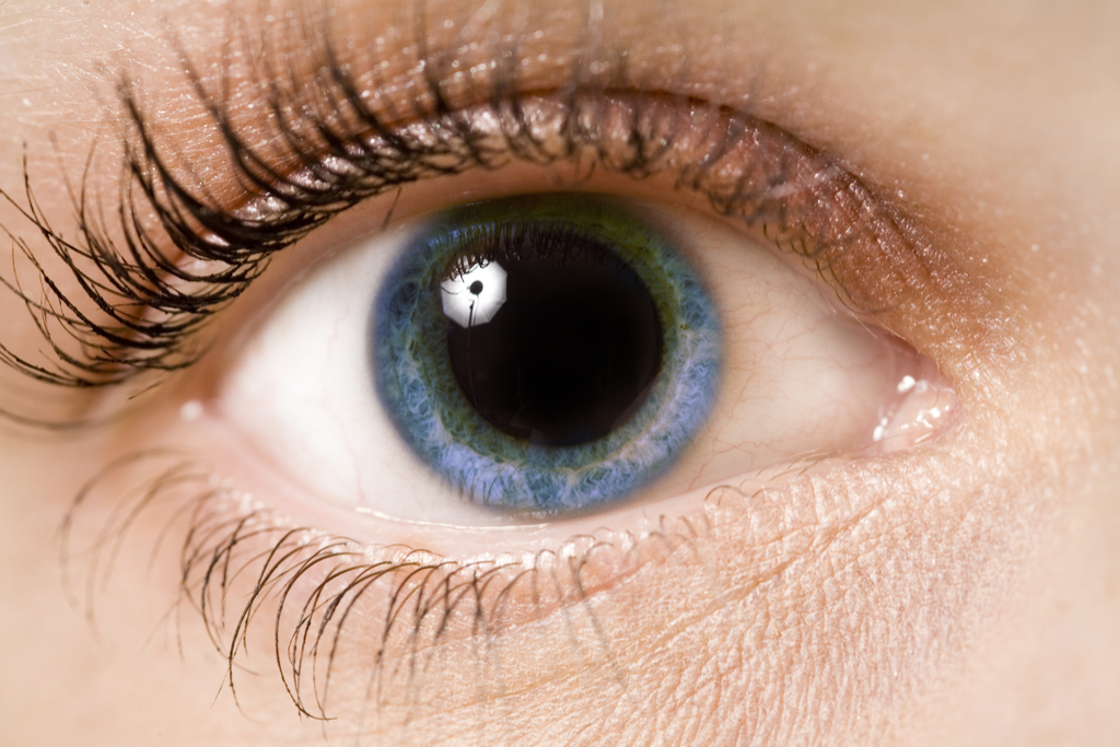 Woman with Dilated Pupils Fall in Love