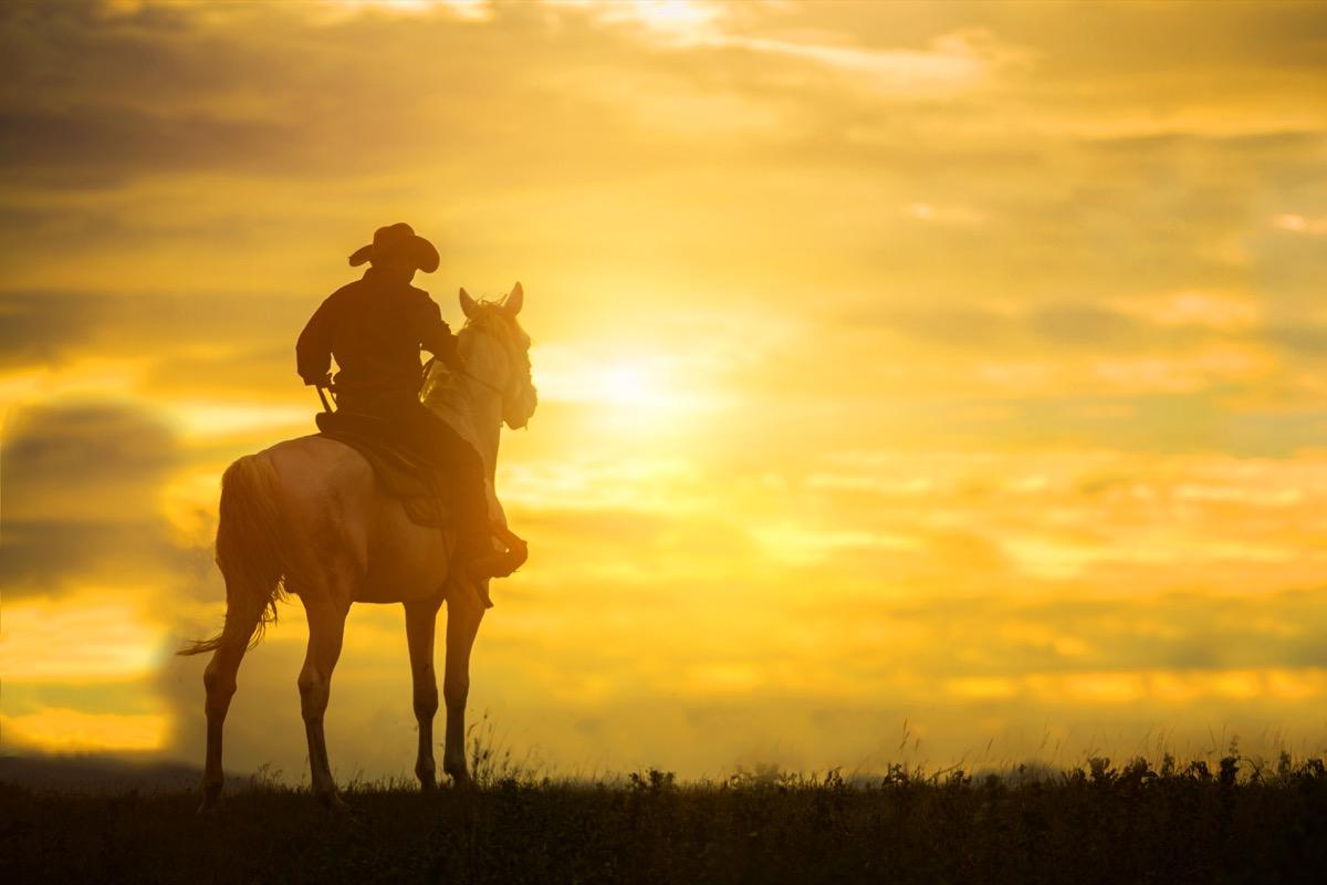 Cowboy riding horse during sunset