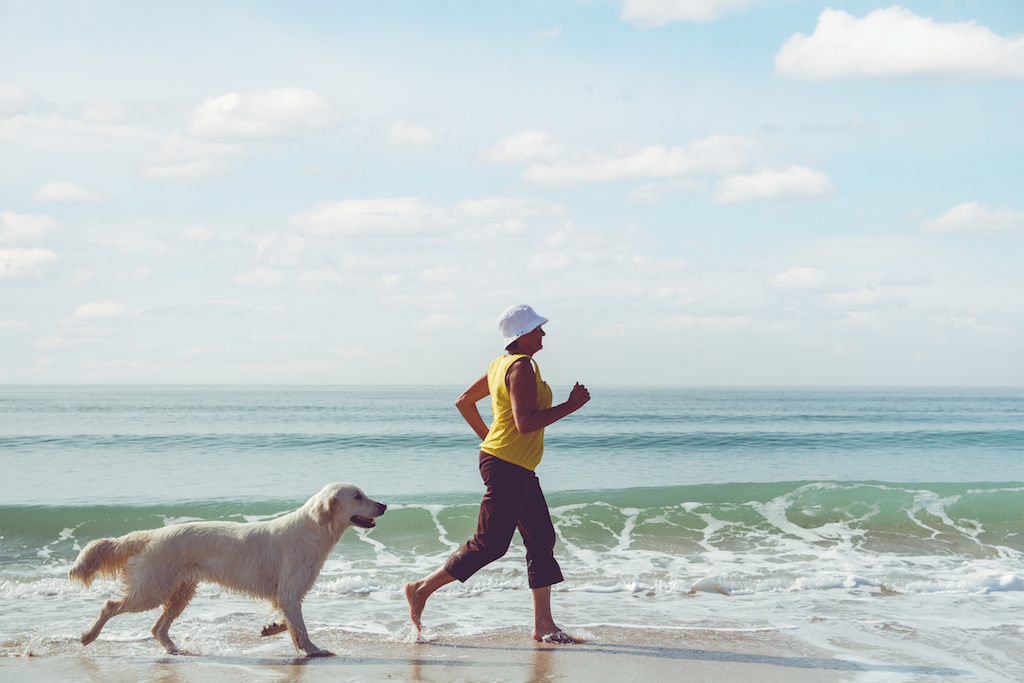 dog running on the beach with his owner