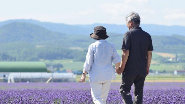 elderly couple walking through lavender field
