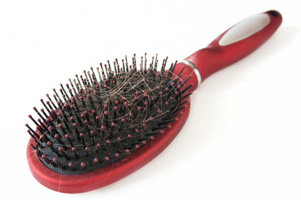 Hair Brush with Hair Signs Your Hair Will Go Gray