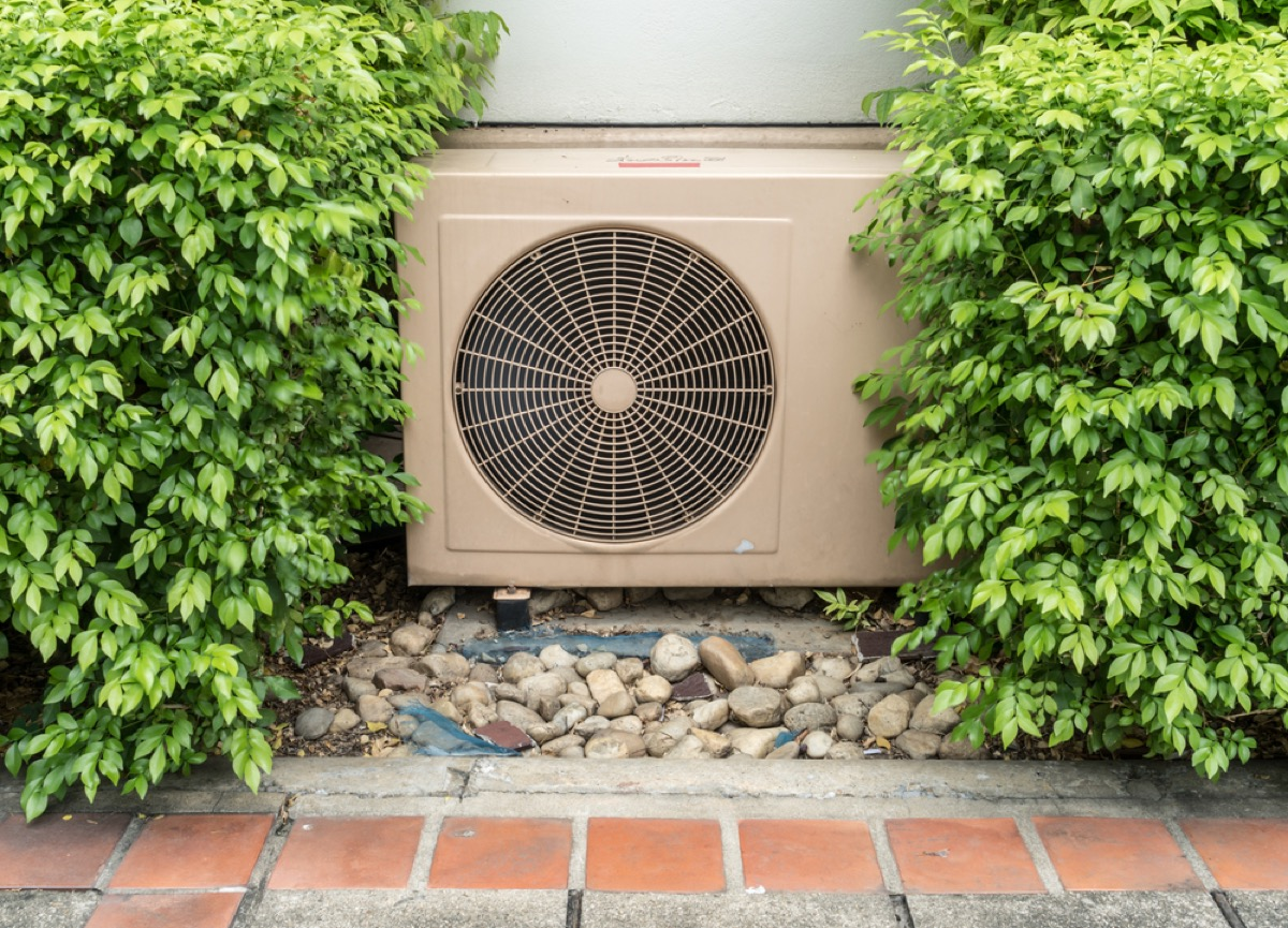 outdoor AC unit surrounded by shrubs