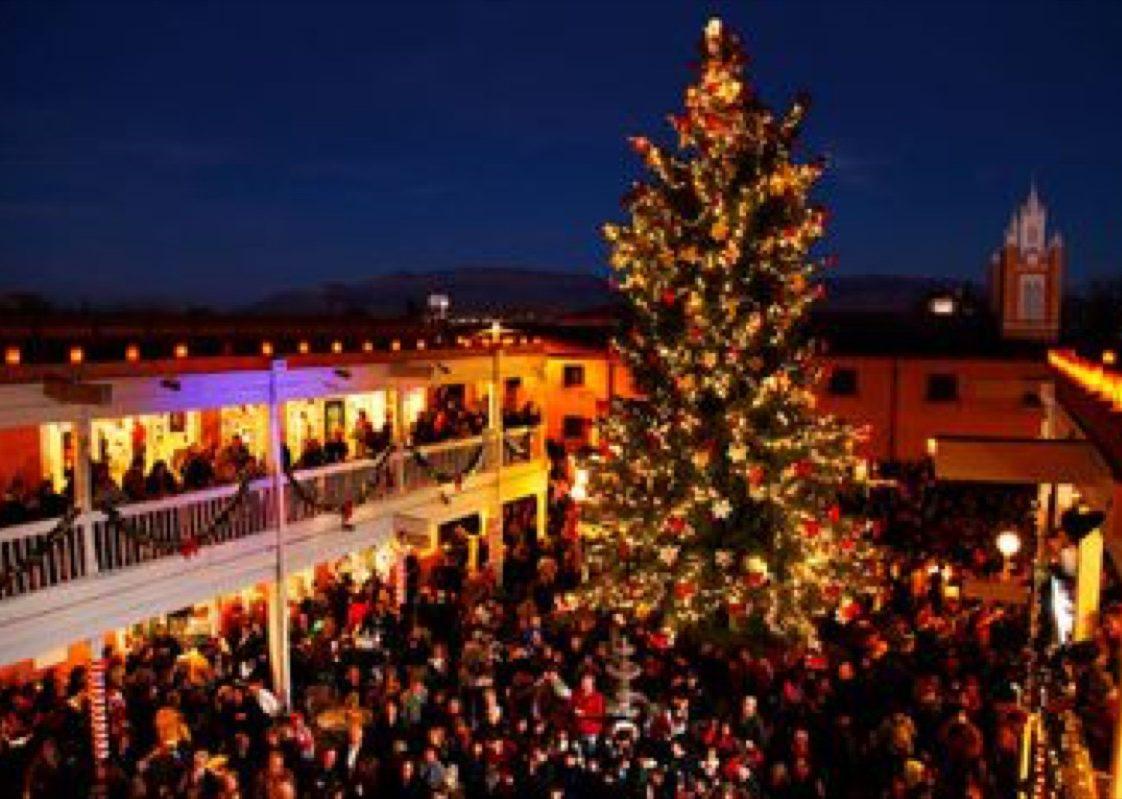 Albuquerque New Mexico State Christmas Tree