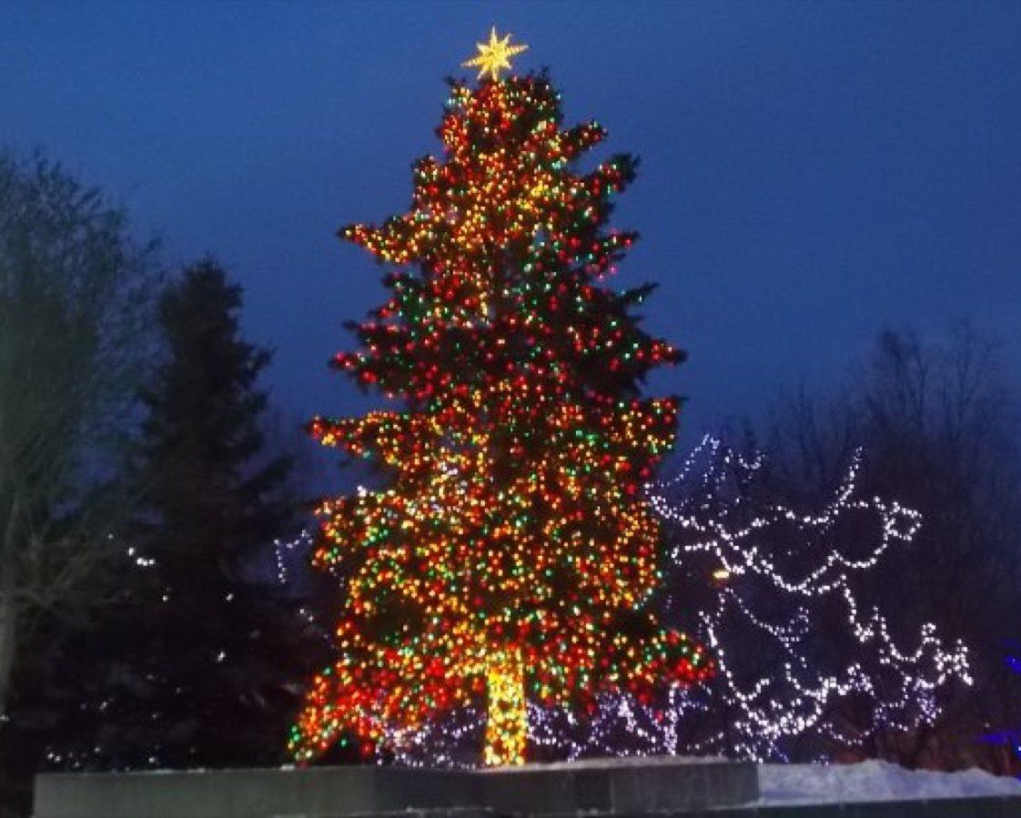 Anchorage Alaska State Christmas Tree