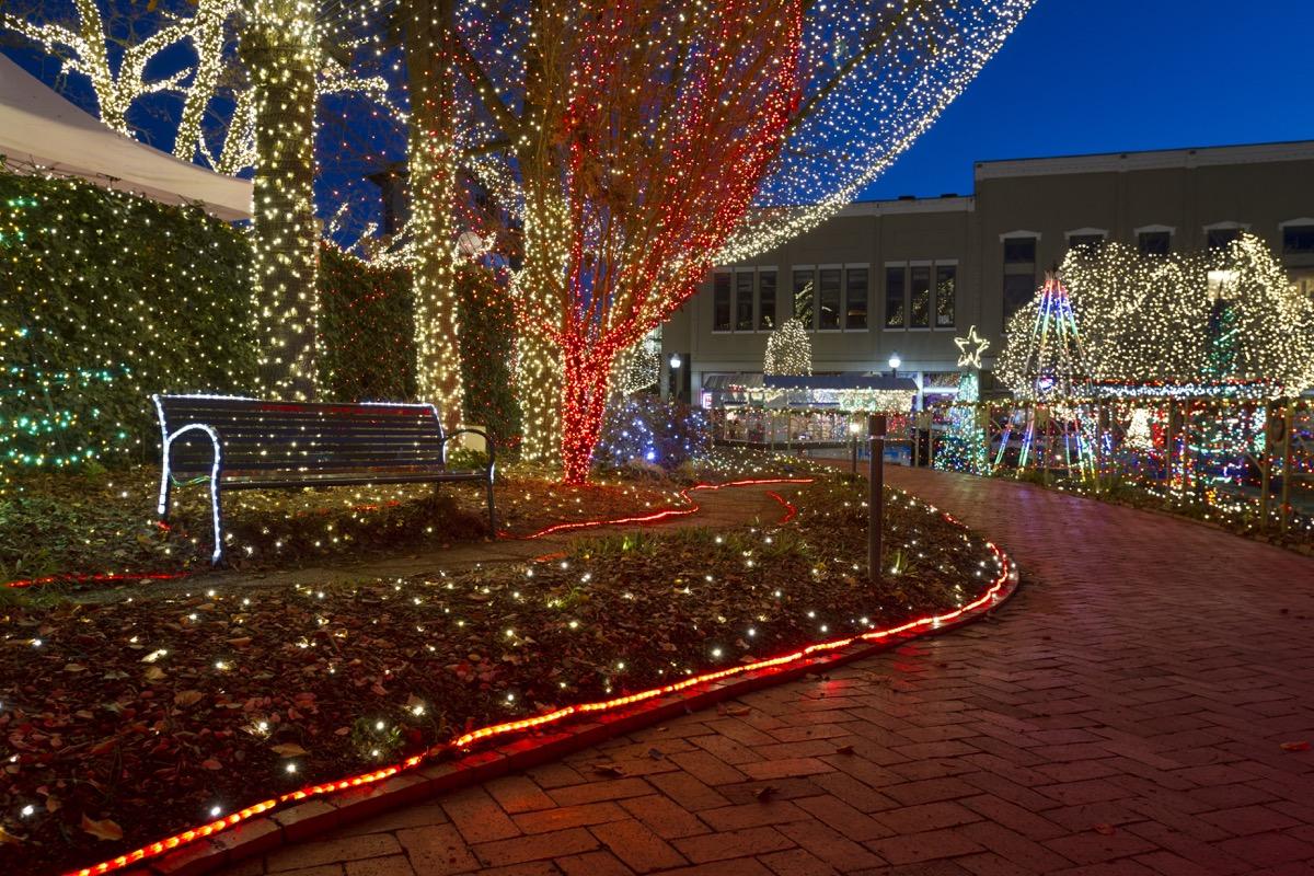 Arkansas Lights of the Ozarks State Christmas Tree