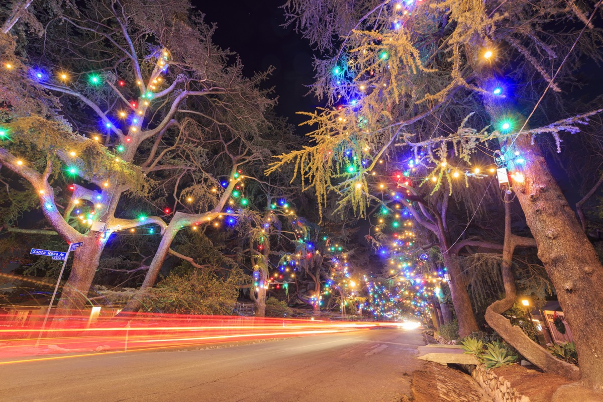 California Christmas Tree Lane State Christmas Tree