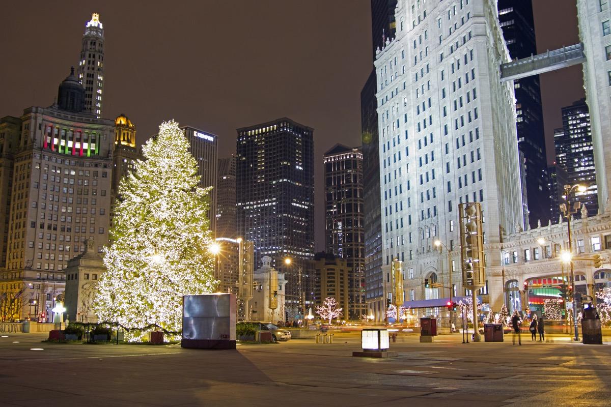 Chicago Illinois State Christmas Tree