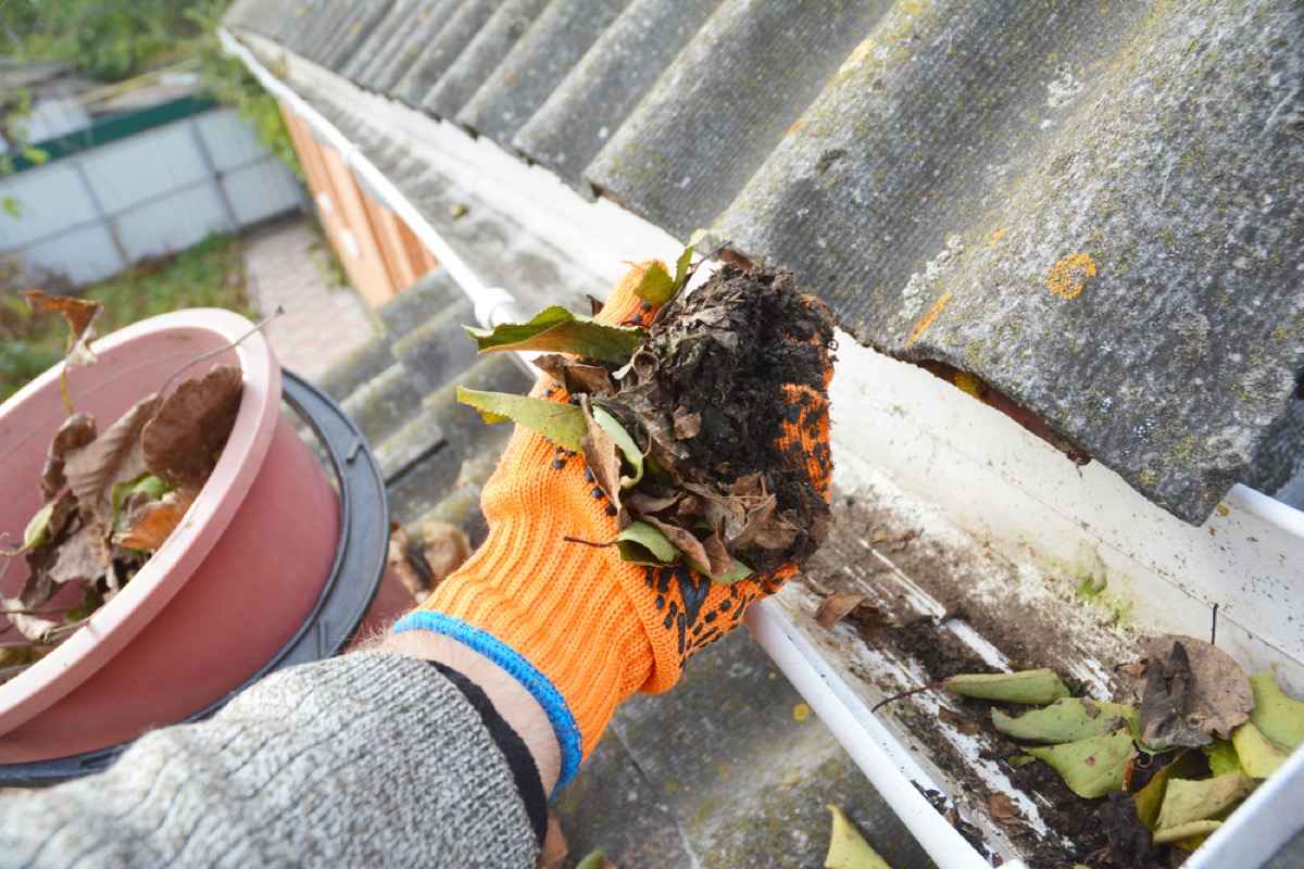 closeup of hand in orange glove removing leaves and debris from gutter