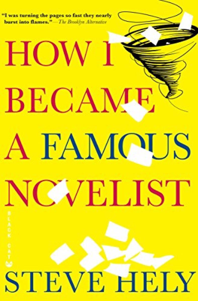 how i became a famous novelist 40 funny books