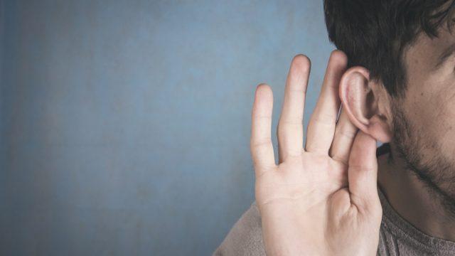 ear, smallest bone in the body