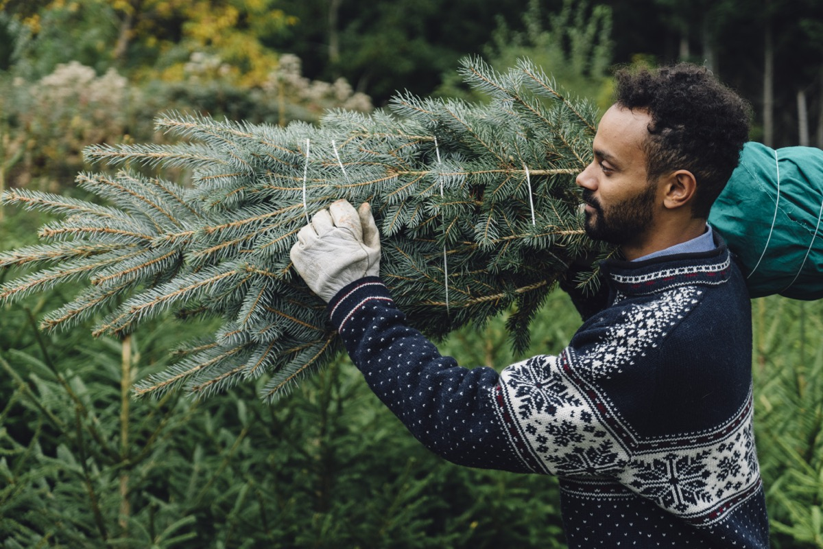 man buying a christmas tree and carrying it