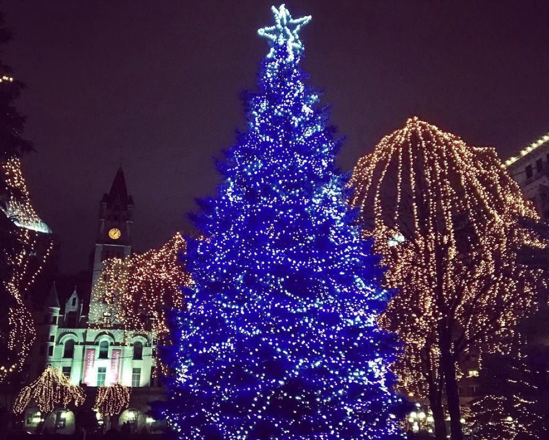 Minneapolis Minnesota Rice Park State Christmas Tree
