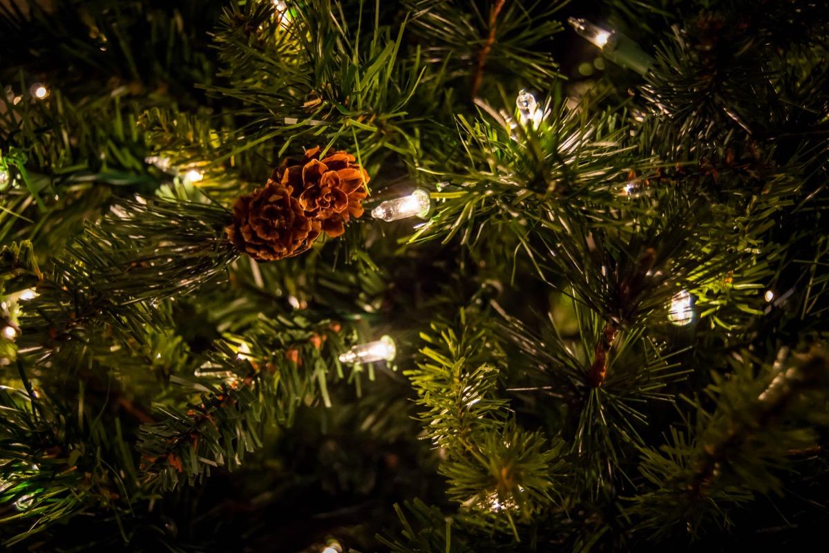 A pinecone on a Christmas tree