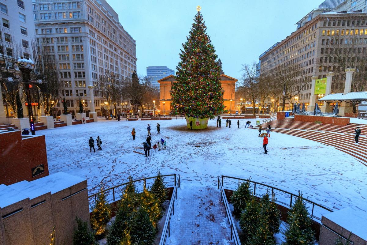 Portland Oregon State Christmas Tree