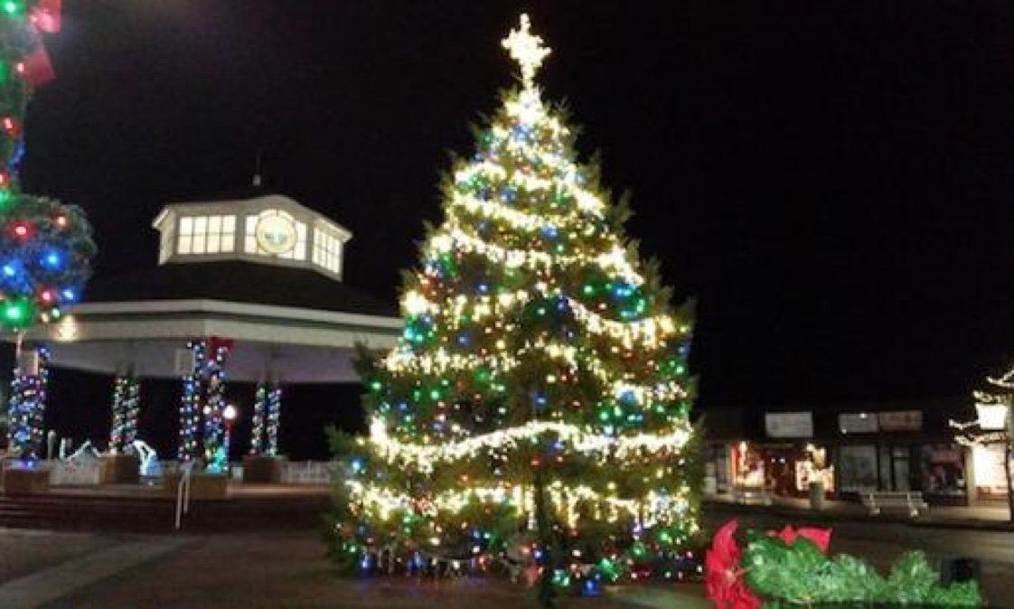 Rehoboth Delaware State Christmas Tree