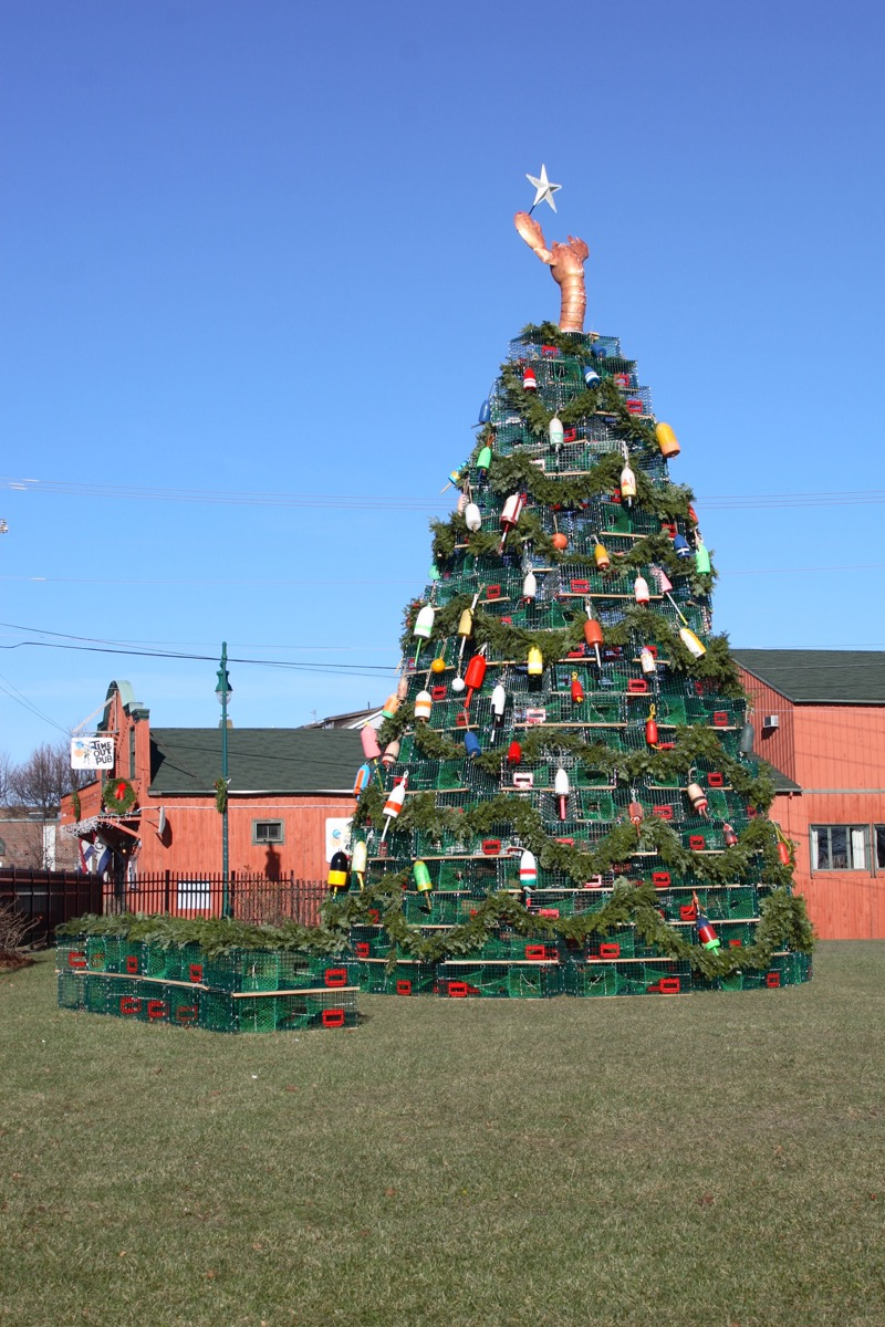 Rockland Maine Lobster Trap Christmas Tree State Christmas Tree