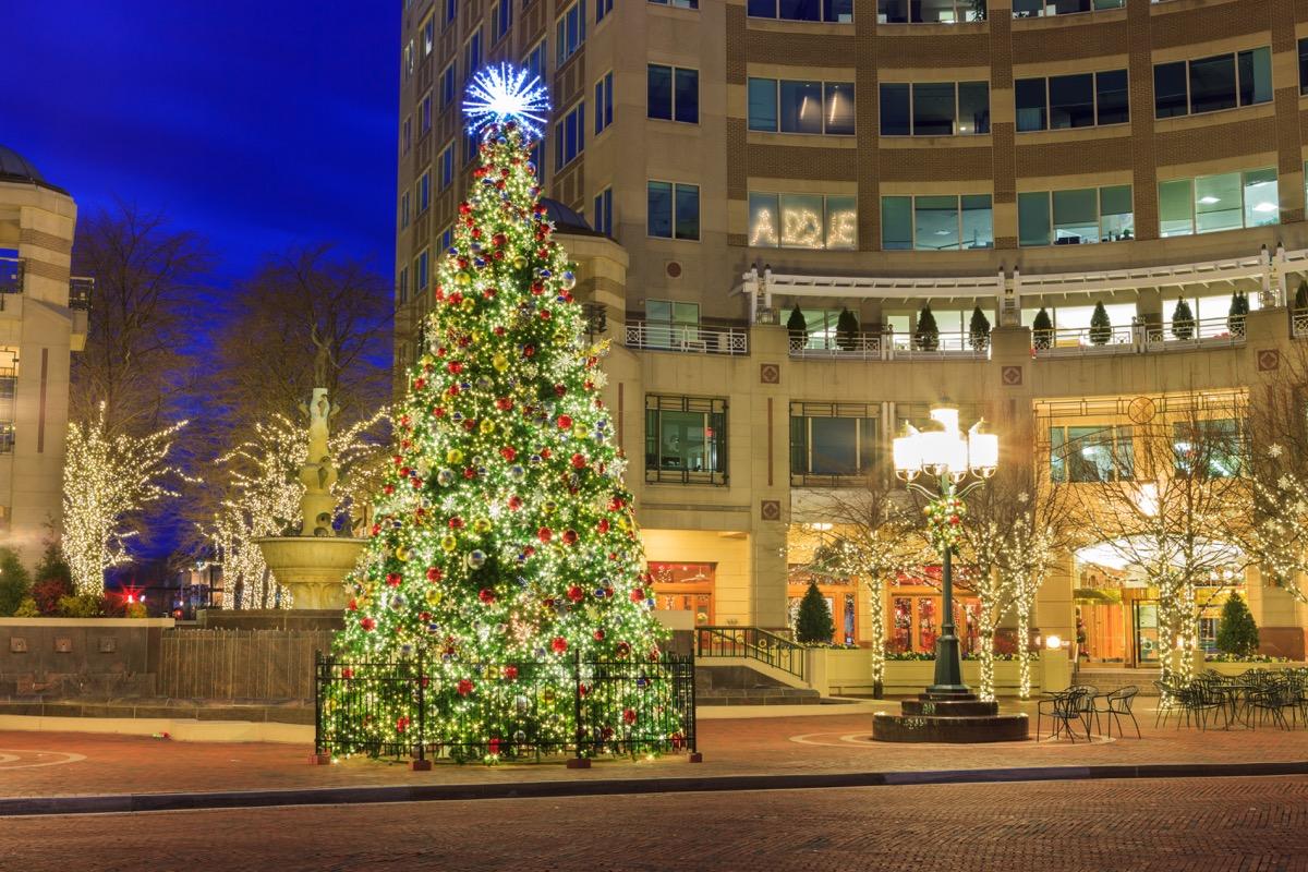 Virginia State Christmas Tree