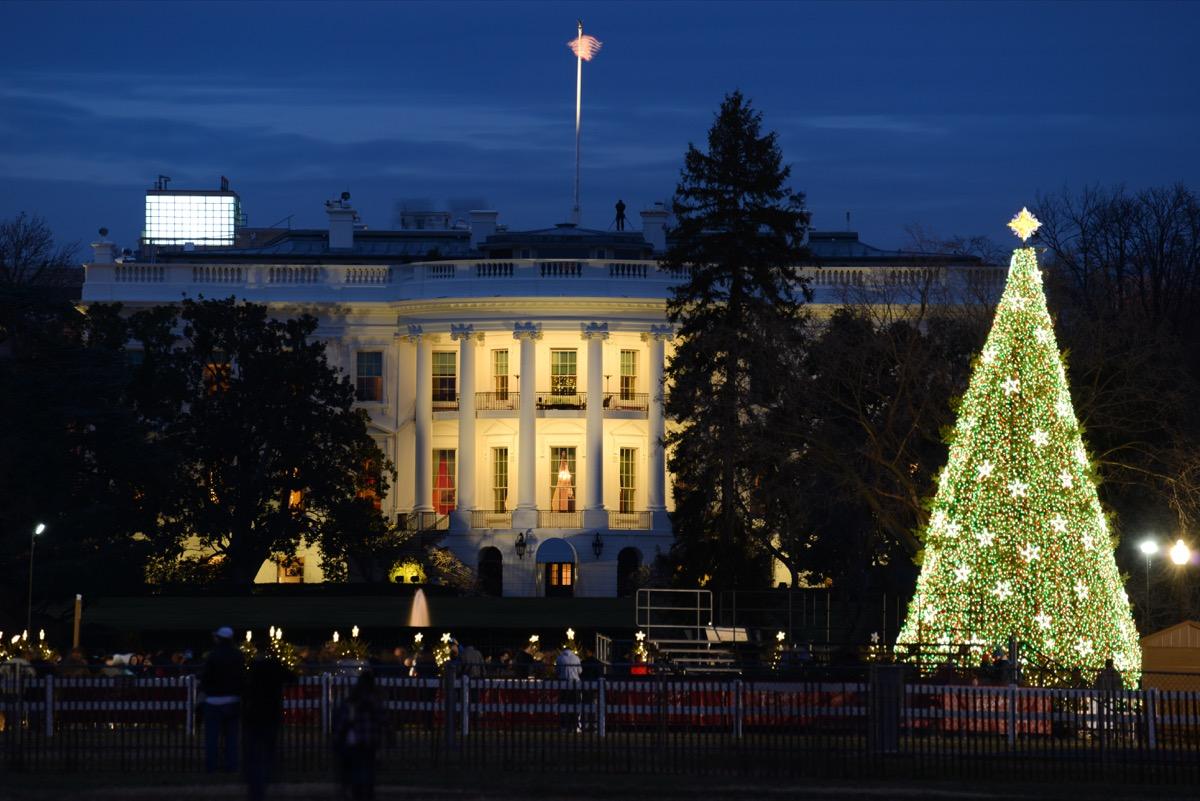 White House State Christmas Tree