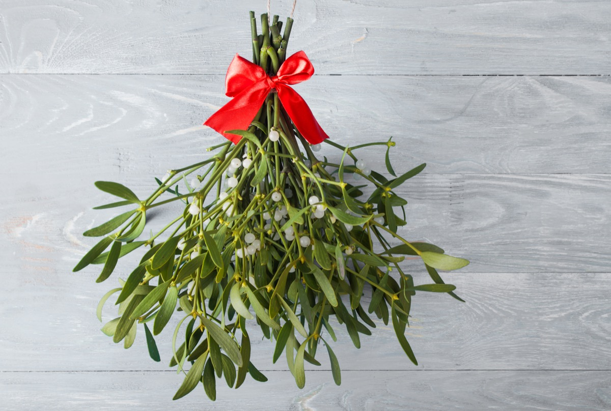 Mistletoe tied with red ribbon