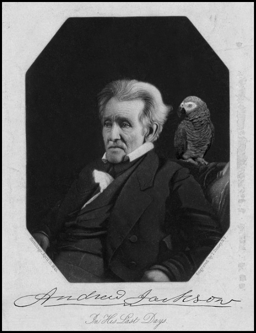 Andrew Jackson and his Parrot historical facts