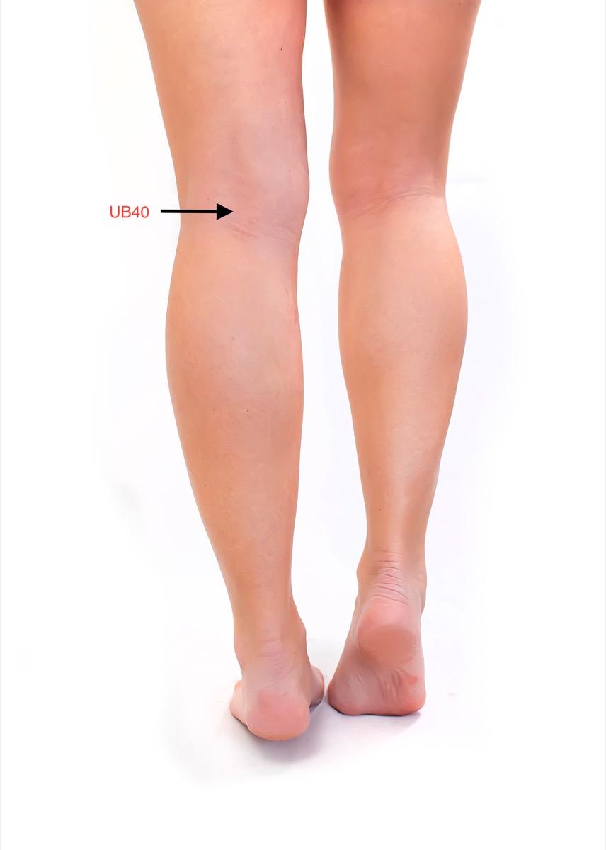 Behind the Knee Pressure Point {Pressure Points}