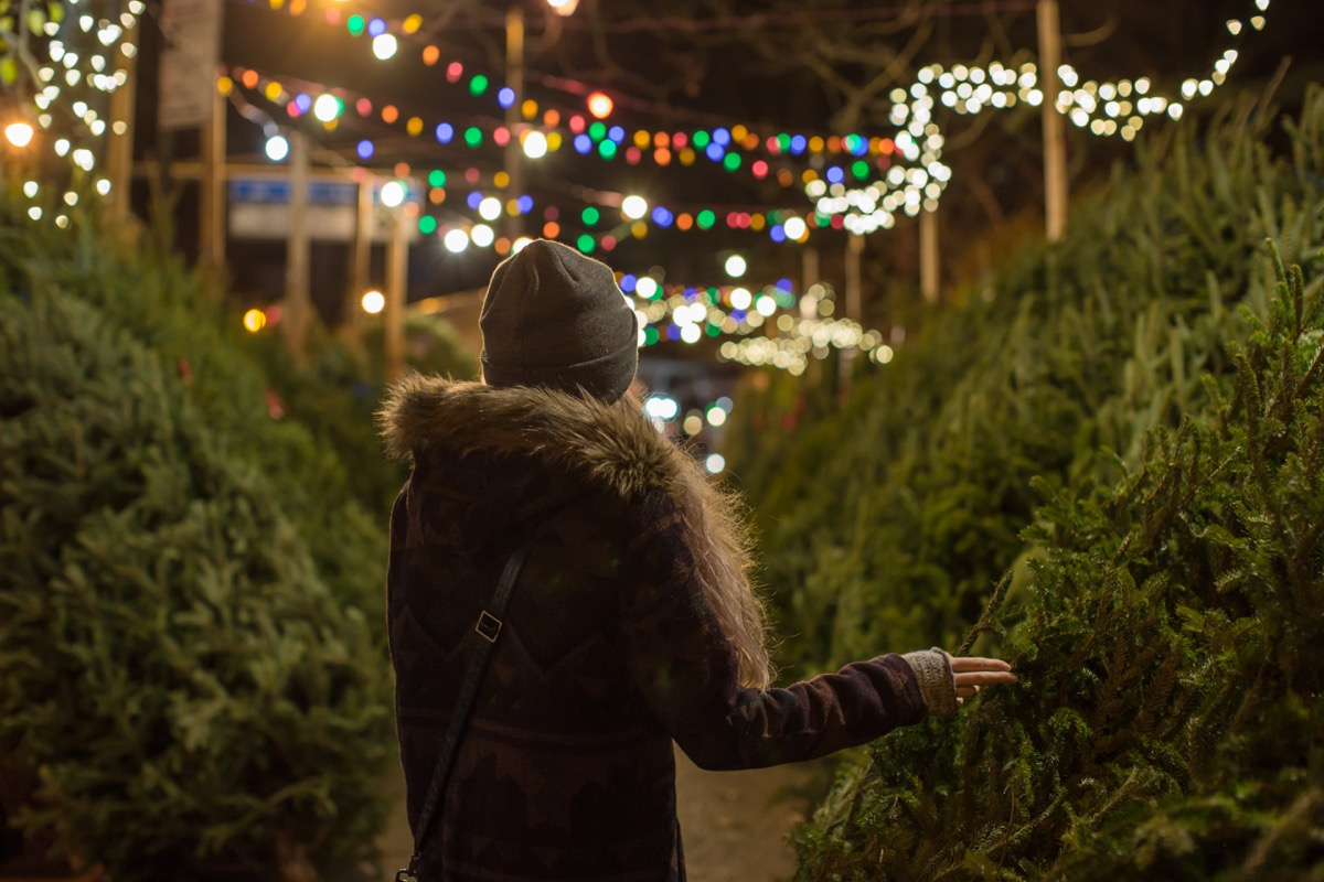 woman standing in a Christmas tree lot