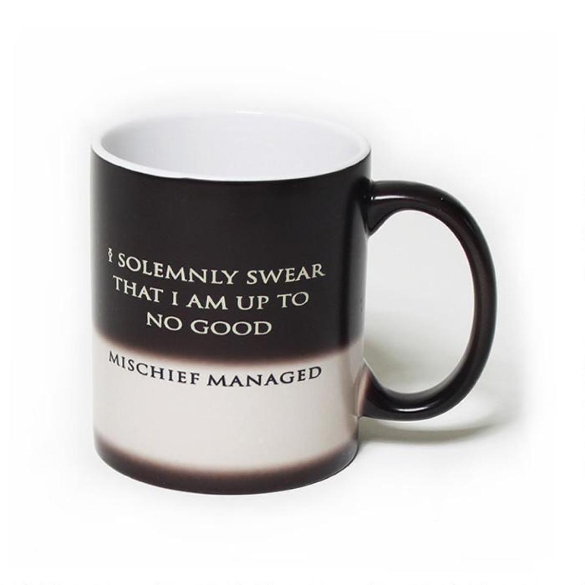 Harry Potter Mug {Gifts For Harry Potter Fans}