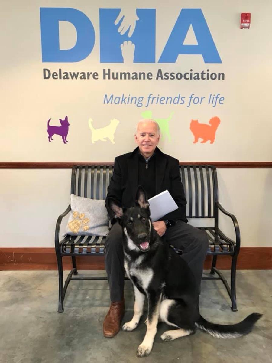 Joe Biden and his Dog {Animal Stories}