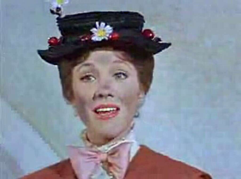 Julie Andrews hottest celebrity the year you were born