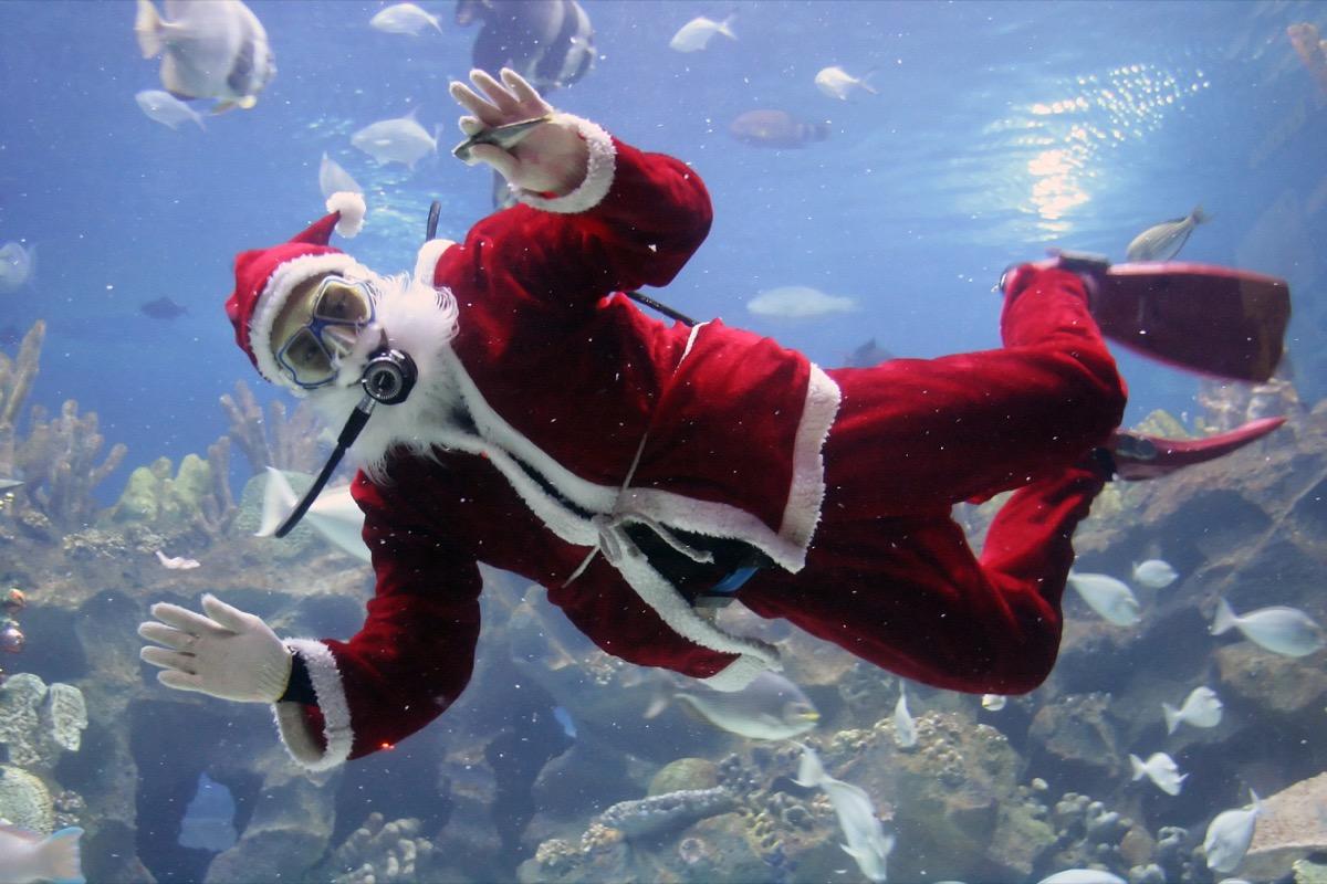 Man in Santa Claus suit scuba diving with fish