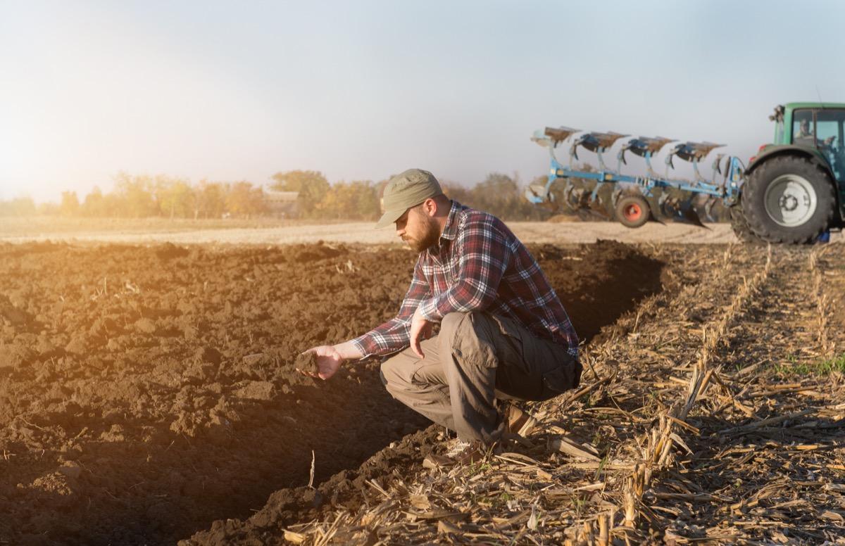 Farmer on farm 2018 predictions